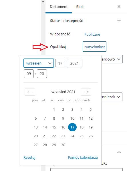data i czas publikacji